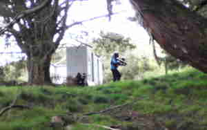 paintball whangarei
